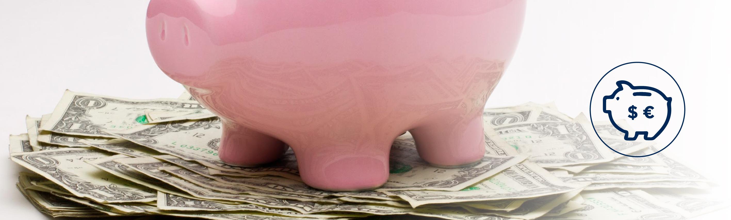 Cuenta de Ahorro en US$ y EURO